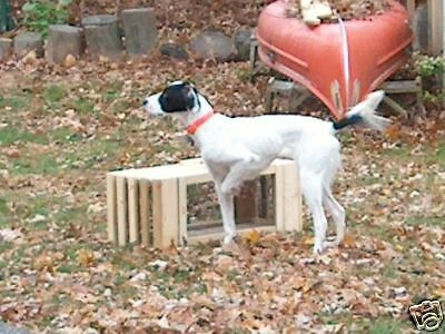Pheasant Cage.Dog Training.TWO  UNITS = Transfer of live Birds U.S.A. BY VETS